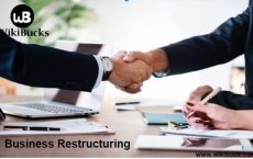 Business Restructuring With Consultants : Expert Analysis